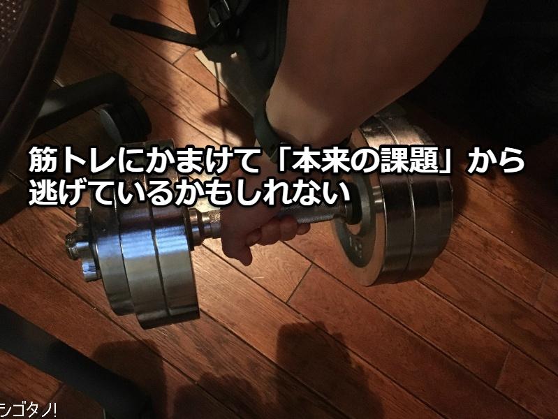 7b371f6632bcaa 目下、毎日欠かさず筋トレに取り組んでいます。具体的には、腹筋とプッシュアップ(腕立て伏せ)とダンベルロウイングの3種目で、腹筋は毎日、プッシュアップと  ...
