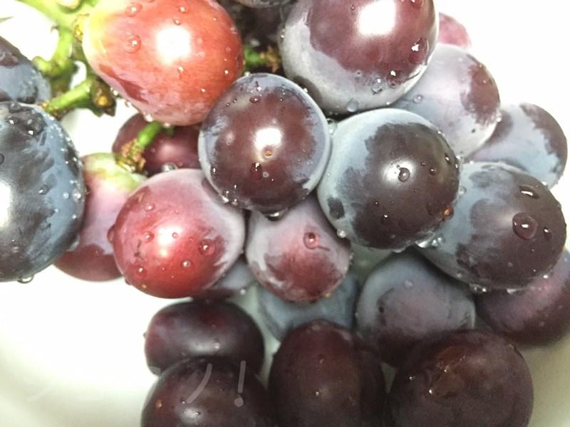 すっぱい葡萄